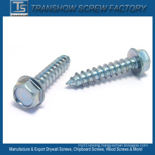 Hex Flange Head Lag Screw
