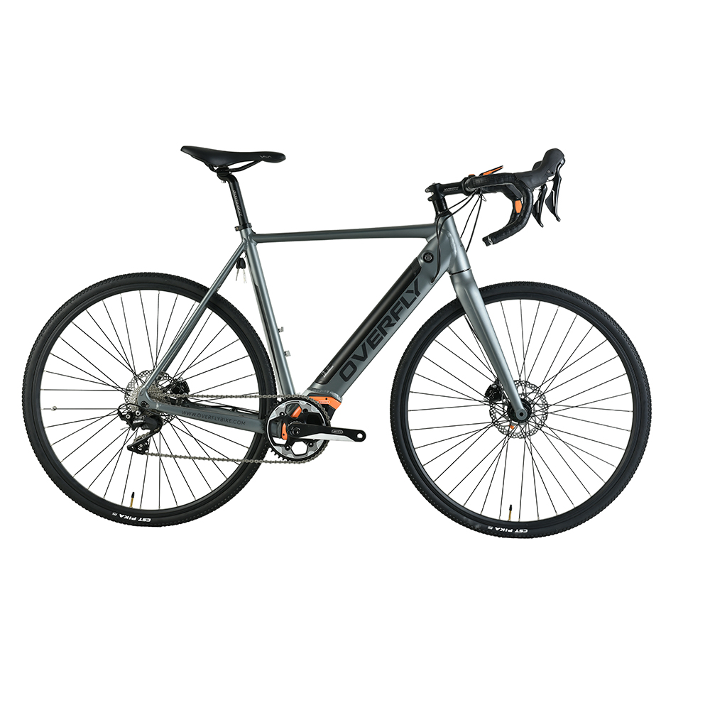 Racing E Bike