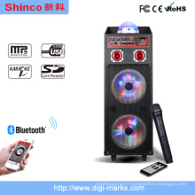 Hot Sale Double 12 pouces Bluetooth Professional DJ Stage Speaker