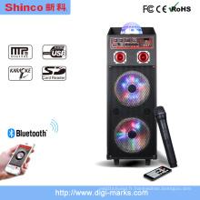 Hot Sale Double 12 pouces Bluetooth Professional DJ Stage Speaker