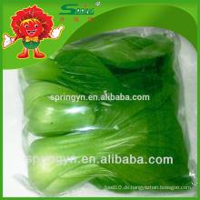 Pakchoi kohl gefroren kohl frisch gemüse hochgradige produkte zum verkauf