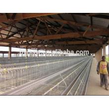 Diseño de casa de pollo para jaula de pollo (5000, 10000, 15000, 20000 capas)