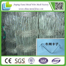 High Quality Galvanized Field Fence/Cattle Fence for Sale