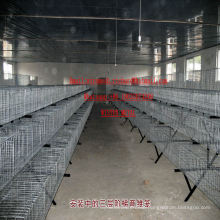 Industrial Steel Rabbit Cage Poultry Cage Animal Cage