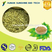 Chinesische grüne Kaffeebohnen, Yunnan-Ursprung, Arabica-Art, Kapseln vorhanden