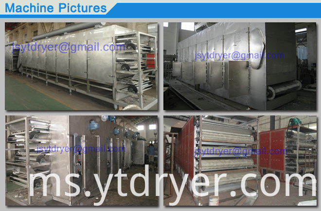 Multilayer Penetrating Belt Dryer