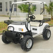 Buggy intelligent de voiture de chasse électrique de 2 places (DH-C2)