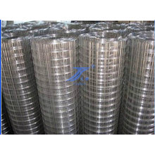 "3/4"" Aperture Galvanized Zinc Welded Wire Mesh"
