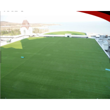 Material Soccer Landscape Artificial Grass