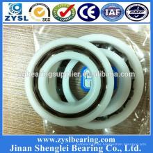 Rodamiento rígido de bolas de plástico 6205 con rodamiento POM o PA o UPE