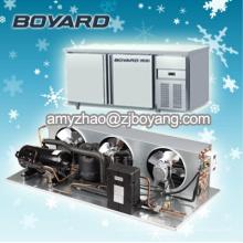 Congélateur profond commercial avec des unités de condenseur horizontales de compresseur de réfrigération de R404A