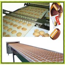 Linha de produção de bolo de sanduíche de venda quente