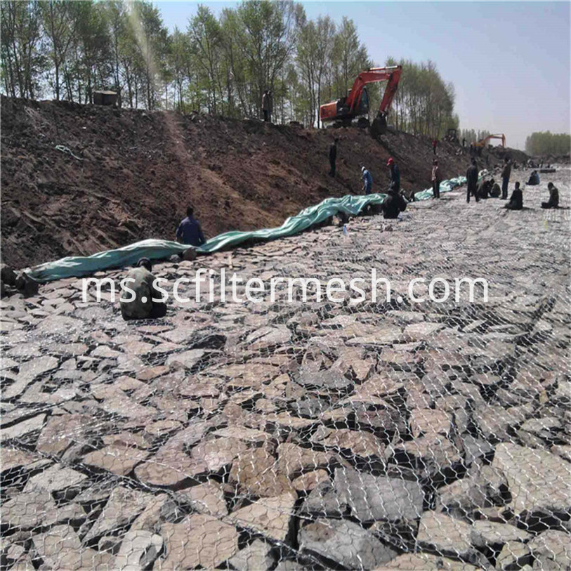 Gabion mesh for wall