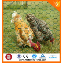 Anping hexagonal wire mesh/chicken coop wire mesh/chicken cages