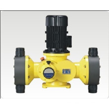 Double Heads Diaphragm Chemical Dosing Pump (GB)