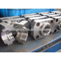 plastic injection mold for preform