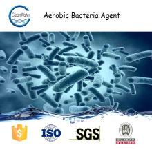 AGENTE DE BACTÉRIAS AERÓBIAS para tratamento de águas residuais n1