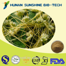 Natural Seed chinese dodder / Chinese Dodder Seed Extract Powder Sexual Enhancement Powder