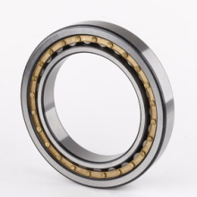 Cylindrical Roller Bearing (N207)
