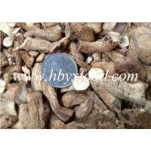 Perna de cogumelos secos com certificado Halal