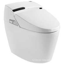 Intelligent Bathroom High Quatity Toilet (JN30609)