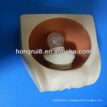 Модель женской презервативы, модель презервативов ВМС