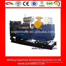 Zuverlässiger China-Steyr-Generator mit CE, ISO, EPA