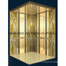 Ascenseur de passagers du fabricant de confiance (JQ-N024)