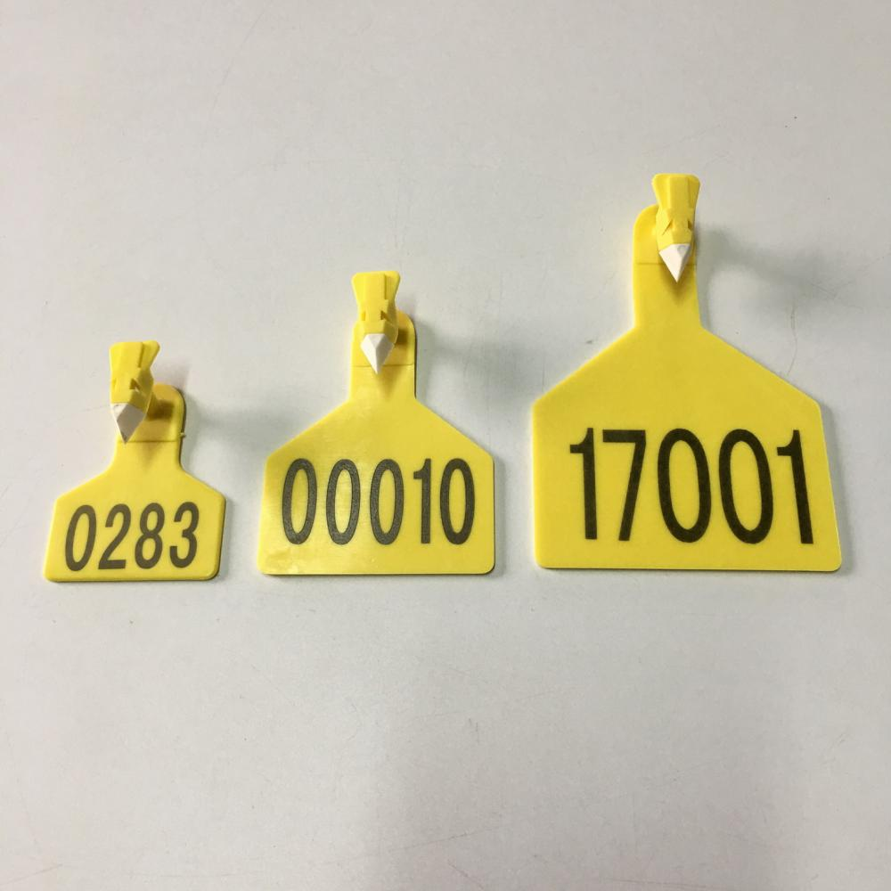 single ear tag for cattle