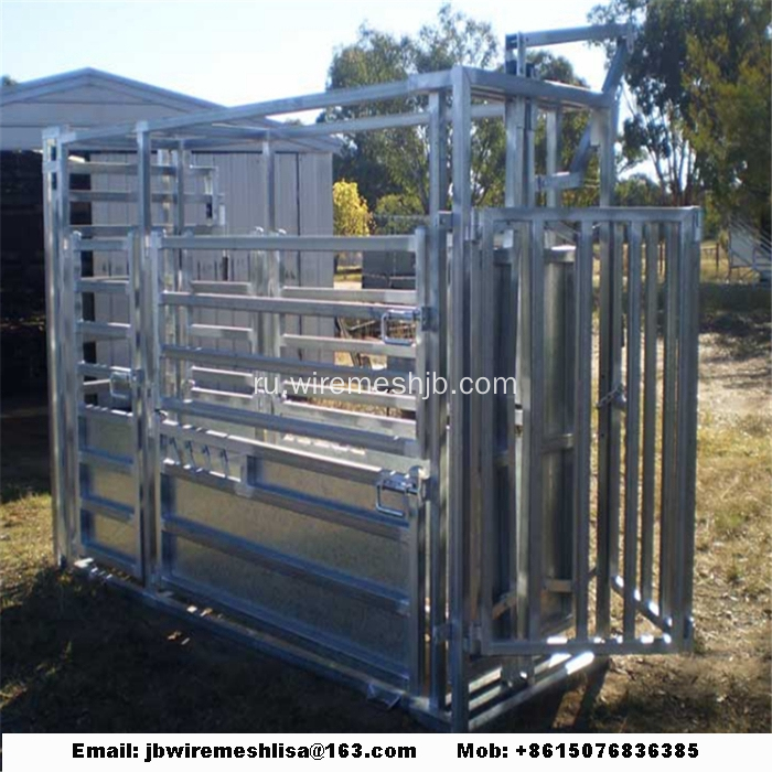 Heavy+Duty+Hot+Dipped+Galvanized+Cattle+Crush