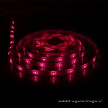 Outdoor Light Dimension W12*l5000 Mm Smart Controller Wholesale Neon Led Strip Lights Usb