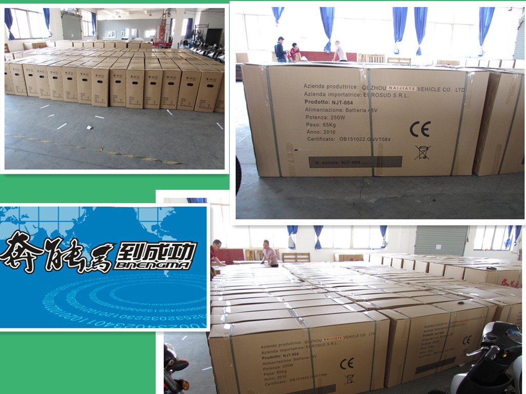 48v20a battery electric bicycle
