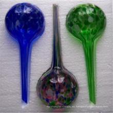 Globos de agua, globos de riego de plantas para macetas de interior