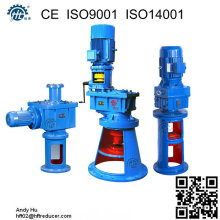 Vertical Top Entry Mixer Agitator Reducer
