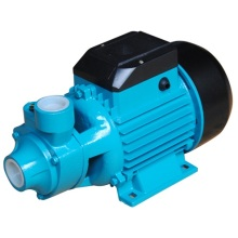 (QB60) High Quality Cast Iron Household Peripheral Water Pump