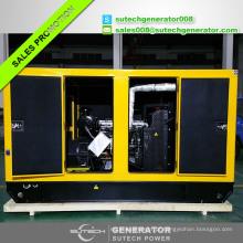 Jogo de gerador diesel do motor 1106C-P6TAG4 de 200kva / 160kw Lovol