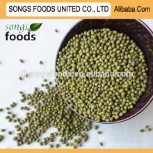 Peeled green mung beans buyer