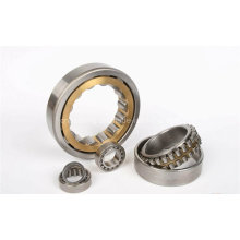 Nup310 Cylindrical Roller Bearing