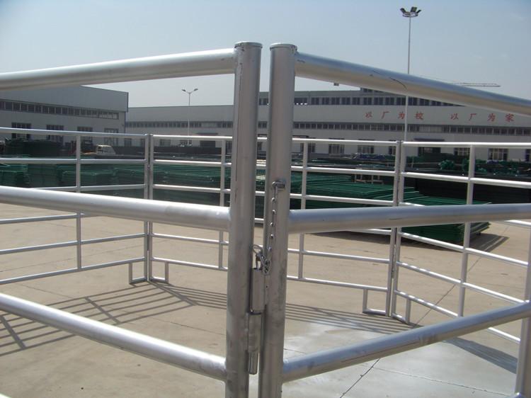 Livestock Horse Fence Panels (38)