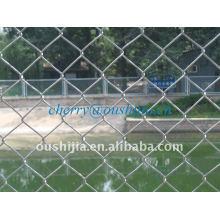 Chain Link Fence (usine et exportateur)
