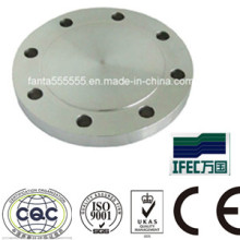 Steel Forged Flange (IFEC-FL100001)