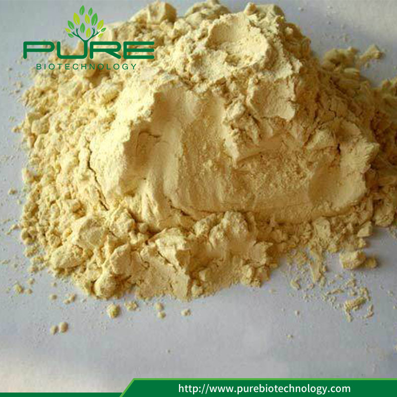 100 Natural Maca Root Extract Powder3