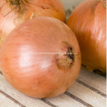 Round Fresh Yellow Onions Fresh Cheap Onion
