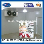cold room for frozen food