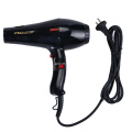 Professional Salon Hair Dryer for 2000W Wholesale