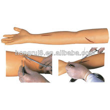 Modelo avanzado del brazo de la práctica de la sutura quirúrgica del ISO