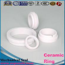 99% Transluzenz Aluminiumoxid Keramische Pumpendichtung Ring