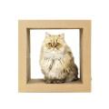 cartón corrugado rolling gato scratcher toy