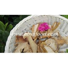 Boletus seco natural con buena calidad