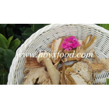 Natural Dried Boletus with Good Quality